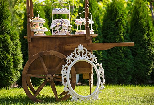 (AOFOTO 10x7ft Candy Cart In Spring Meadow Backdrop Outdoor Lawn Buffet Cake Photography Background Rustic Garden Dessert Girl Leisure Princess Party Decor Classic Elegant Frame Photo Studio Props)