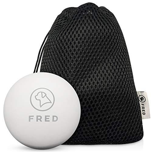 FRED Premium Hundeball aus Naturkautschuk – sehr robuster Hundespielball – Weiss- nahezu unkaputtbar- 6,5cm Ø inkl…