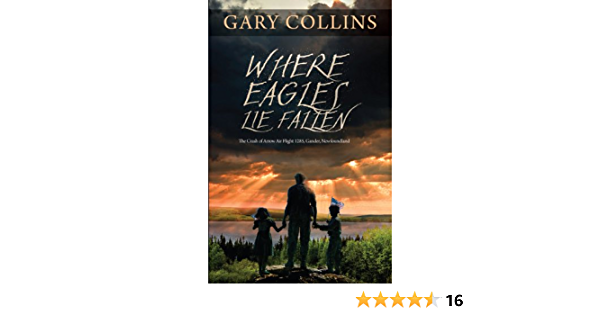 Read Where Eagles Lie Fallen The Crash Of Arrow Air Flight 1285 Gander Newfoundland By Gary Collins