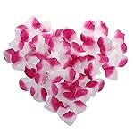 AEXGE-Wholesale-1000-Pack-Silk-Rose-Petals-Wedding-Artificial-Flower-Favors-Home-Party-Garden-Decoration