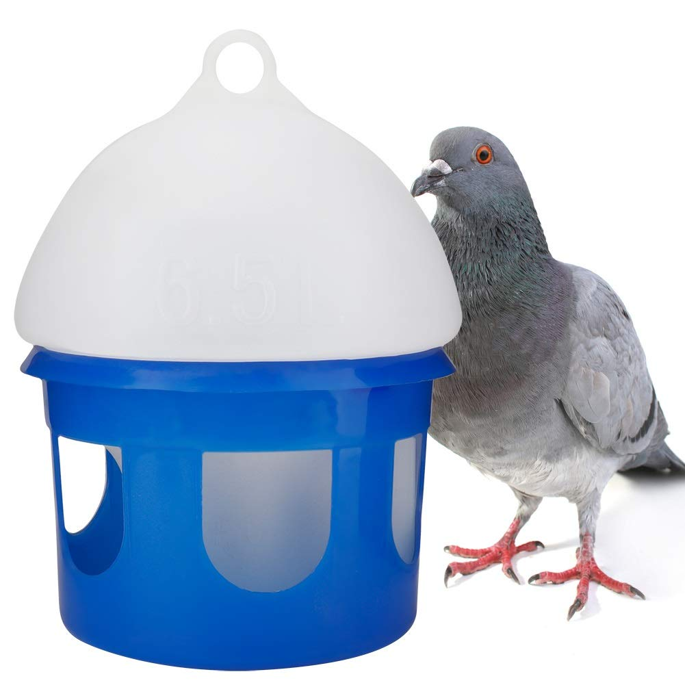 Jadeshay Pigeon Drinkers-Bird Drinking Bottle Large Capacity Automatic Pigeon Feeder Water Dispenser Waterer(3 Sizes) (Size : 6.5L) by Jadeshay