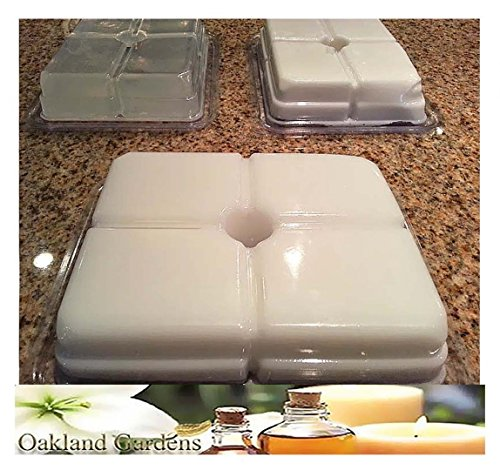 GOAT MILK Melt and Pour MP Soap Making Kit - Excellent Indoor Activity, Good Clean Fun, Hobby, Party Favors - BULK x Soap Making Kit By Oakland Gardens (1 MP Soap Kit + 8 LB Soap) by Oakland Gardens Wedding & Home Decor (Image #1)