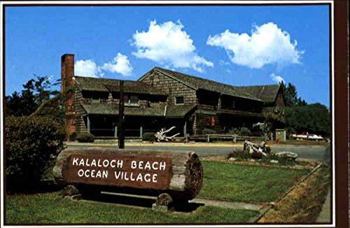 Kalaloch Lodge, H.C. 80, Box 1100 Forks, Washington Original Vintage Postcard (Fork Hc)
