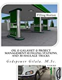 Oil & Gas;Asset & Project Management:10 Filling Stations, And 30 Haulage Trucks.: Africa - Abuja: Build Station & Buy Used Trucks GBP120.3Million Profit Business Plan.