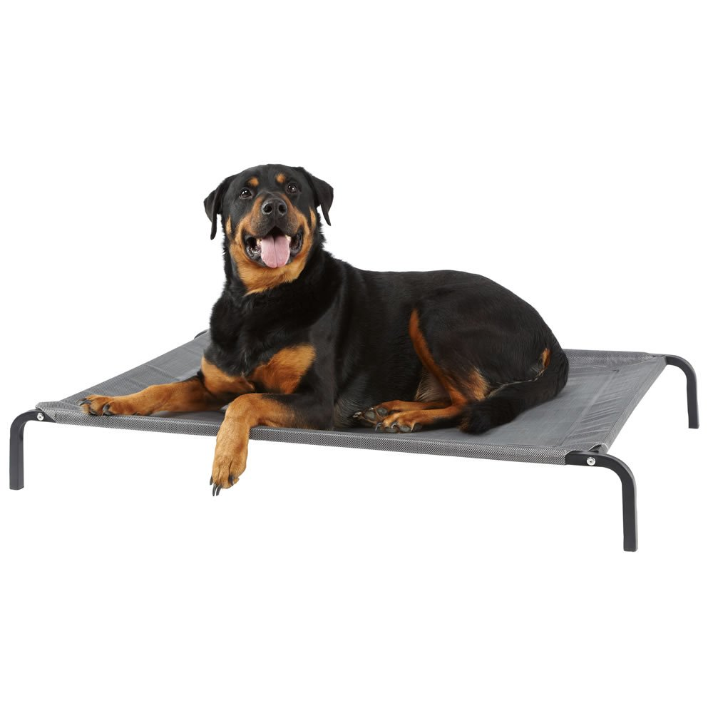 Bunty Elevated Dog Bed Portable Waterproof For Outdoor and Camping - Large