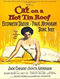 Cat on a Hot Tin Roof: Composition Book | Vintage Movie Poster Notebook | Journal | School Notebook | College Ruled Paper - 200 Pages/100 Sheets (7.44x9.69)
