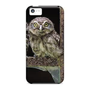 Waterdrop Snap-on Baby Owls Case For Iphone 5c