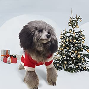 PETLESO Dog Santa Costume - Puppy Dog Christmas Coat Doggie Santa Costume Outfit With a LED Flashing Dog Tag -XL