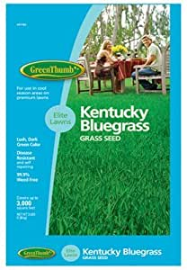 barenbrug Estados Unidos 491186GT 3Lb KY Bluegrass