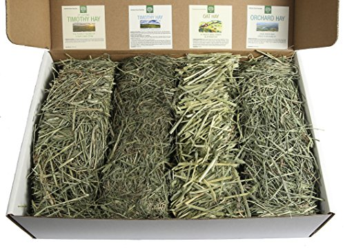 Small Pet Select-Sampler Box, 2ND Cutting, 3RD Cutting Timothy Hay, Oat Hay, & Orchard Hay (Organic Orchard Grass)
