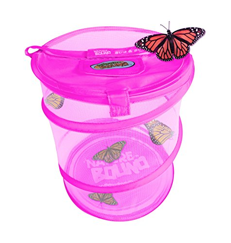 Nature Bound Pink Bug & Butterfly Village Habitat Kit, Pink, One Size