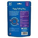 N-Bone Puppy Teething Ring Pumpkin Flavor 7.2