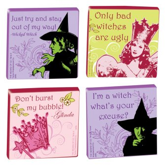 Wizard of Chunky Witch 4 piece Magnet - North Shopping Kansas City
