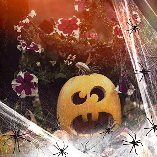 BigOtters Fake Spider Web, 1000 sqft Stretchy Spider Web with 60 Spiders Halloween Ghost Banner Horrible Party Decorations Props