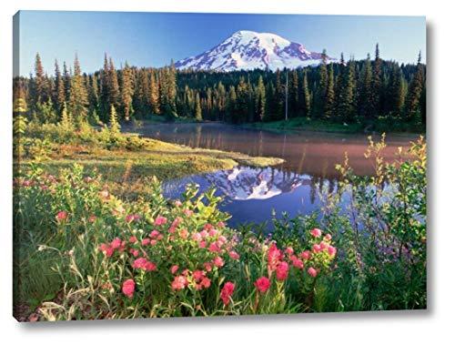 Mt Rainier and Wildflowers at Reflection Lake, Mt Rainier National Park, Washington by Tim Fitzharris - 20