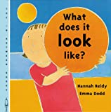 What Does It Look Like?, H. Reidy, 1840891548