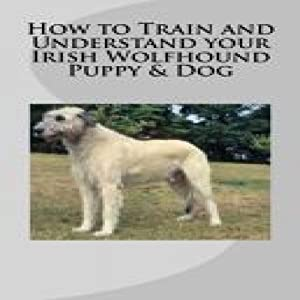 How to Train and Understand Your Irish Wolfhound Puppy & Dog Audiobook