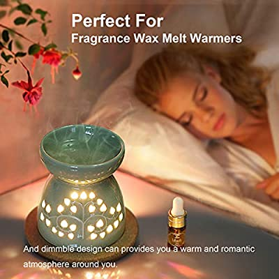 15 Watt Scentsy Bulbs, 12 Pack Replacement Bulbs for Plug-in Nightlight Wax Warmers, Salt Lamps & Wax Diffusers, 120 Volt Incandescent Bulbs with E12 Candelabra Base, Dimmable - Warm White