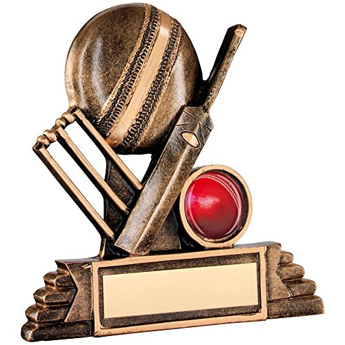 JR6-RF116A Brz/Gold Resin Cricket Trophy - (1in Centre) 4.25in Includes Free Engraving (Up to 30 Characters) by Lapal Dimension (Resin Cricket)
