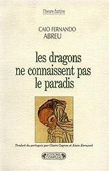 Les dragons ne connaissent pas le paradis (French Edition)