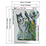 """Dog Diamond Painting- Malamute Diamond Painting Kits, Full Coverage, Round Rhinestone, DIY Tool Kit Art Supplies- Fun Gifts for Friends&Family, Adults&Children, Craftwork for Indoor Décor(12""""x16"""") 9"""
