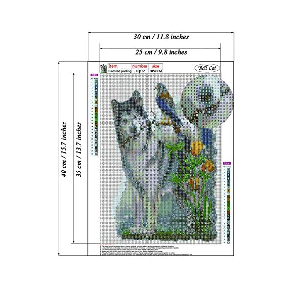 """Dog Diamond Painting- Malamute Diamond Painting Kits, Full Coverage, Round Rhinestone, DIY Tool Kit Art Supplies- Fun Gifts for Friends&Family, Adults&Children, Craftwork for Indoor Décor(12""""x16"""") 2"""