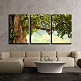 wall26 - 3 Piece Canvas Wall Art - Spring Meadow with Big Tree with Fresh Green Leaves - Modern Home Decor Stretched and Framed Ready to Hang - 24''x36''x3 Panels