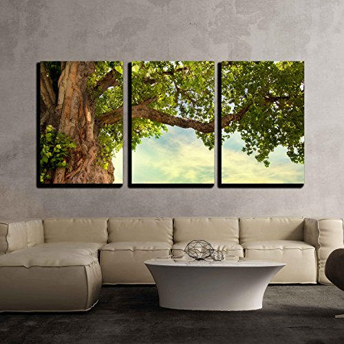 wall26 - 3 Piece Canvas Wall Art - Spring Meadow with Big Tree with Fresh Green Leaves - Modern Home Decor Stretched and Framed Ready to Hang - 16