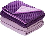 7 lbs Weighted Blanket with Dot Minky Cover for Kids Teens Inner Light Violet Cover Dark Violet   Violet 41 x60 7lbs
