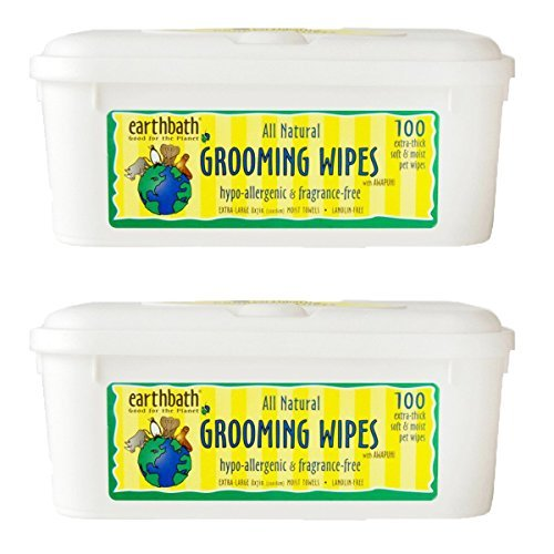 Earthbath All Natural Grooming Wipes, Hypo-Allergenic and Fragrence Free - Pack of 2