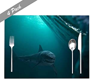 Capsceoll Placemats Heat-Resistant Washable Dining Table Placemat 18X12 Inches Set of 4 Placemats, Great White Shark Near by Water Surface Underwater Wildlife for Holiday Kids and Kitchen Table Mats