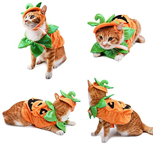 Legendog Cat Halloween Costume,Cat Halloween Apparel Pumpkin Design Funny Pet Clothing Halloween Cat Outfit with Pumpkin Headwear for Cats and Puppy