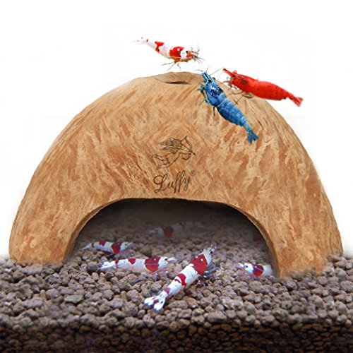 SunGrow Organic Coco Shrimp Cave : Comfortable Hideout for Shrimp : Perfect Breeding Area : Naturally Attractive & Non Toxic : Unique Aquarium - The Stores Miami At Falls
