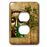 3dRose Religion - Image of Chinese Buddha Face With Bamboo - Light Switch Covers - 2 plug outlet cover (lsp_279884_6)