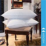 HomyDelight 10/90 GOOSE FEATHER PILLOW TWIN PACK Washable Dryable Cotton White Jumbo 20'' x 28''