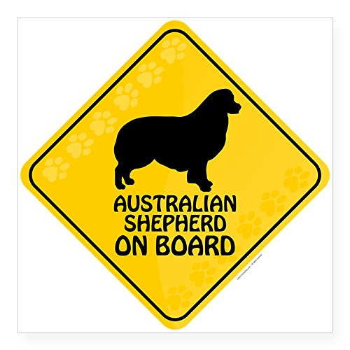 CafePress Australian Shepherd On Board Square Sticker 3 X 3 Square Bumper Sticker Car Decal, 3