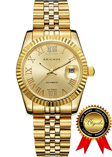 BRIGADA Swiss Watches Luxury Gold Waterproof Watches for Men, Nice Automatic Men's Watches