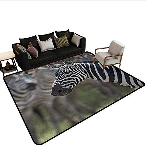 AlEASYHOME Non Slip Pad Rug Carpet, Zebra in Serengati National Park Safari Animal in Desert Picture, 4.9′x5.9′ Hardwood Or Tile Floors Protection, Black White Reseda Green (Black And Floor White Zebra Tile)