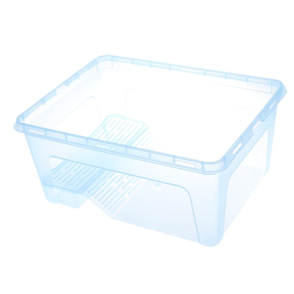 non-brand MagiDeal Aquarium pour Poisson Tortue en Plastique Transparent Décoration pour Salon/Chambre à Coucher/Bureau 30x23x14cm - Transparent