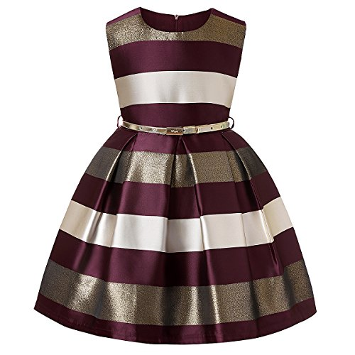 LLQKJOH Girls Dresses Size 4 Dresses Girls Kids Dresses for Girls Dresses Children Party Dresses Children (Burgundy,4)