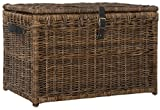 happimess Michael 35' Wicker Storage Trunk, Brown