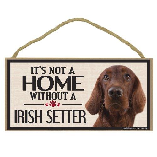 Imagine This Wood Sign for Irish Setter Dog Breeds (Irish Lions Home Shirt)