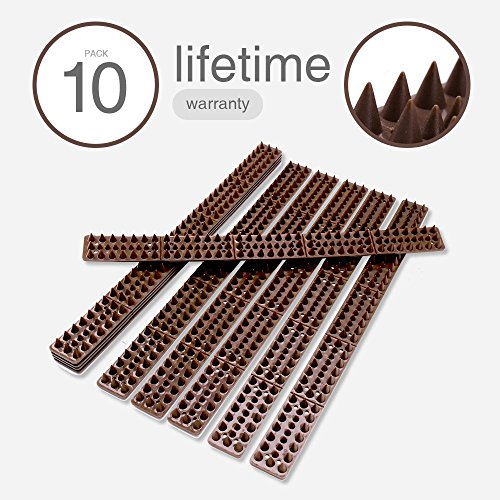 """- Premium Bird Spikes, Bird Repellent Spikes for Pigeons Small Birds Critters - 16 Feet Long 2"""" Wide Plastic Bird Deterrent Spikes Anti Bird Spikes Strips-Idea for Fences Walls Railings Sheds Roof (10)"""