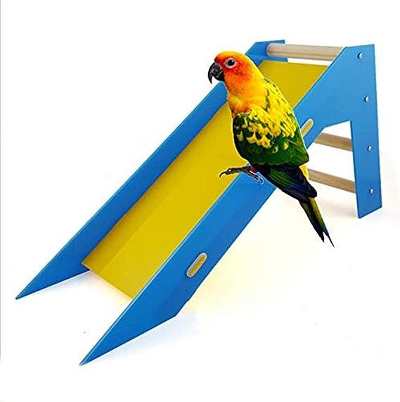 GYJ Loro tobogán Toy Bird Inteligencia Entrenamiento Habilidad Escalera de Arrastre Juguetes educativos Truco Deslizamiento Prop Aves Loros Deslice Periquitos Trainng: Amazon.es: Hogar
