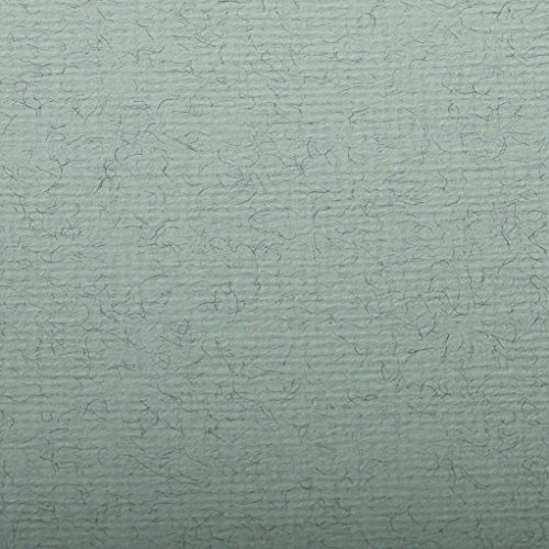 Clairefontaine Ingres Pastel Colour Sheets, 130 g, 50 x 65 cm, 25 Sheets, Aqua Green