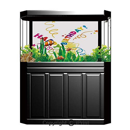 Terrarium Fish Tank Background,Birthday Decorations,Surprise in a Box Doodle Style Cheerful Spirals Confetti and Stars,Multicolor,Photography Backdrop for Pictures Party Decoration,W48.03