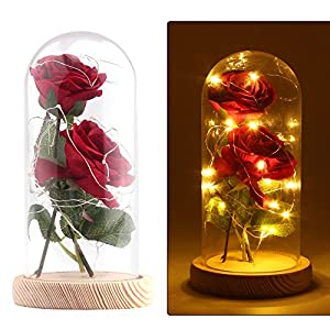 Enchanted Rose Lamp, Beauty and The Beast Rose in Glass Dome, 20 Led Light 2pcs Red Silk Rose Flower on a Wood Base, Romantic Forever Gift for Birthday Party Wedding Anniversary Valentine's Day Decor