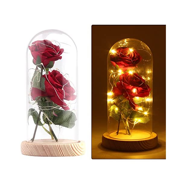ALLOMN Beauty and The Beast Red Silk Rose in Glass Dome, Preserved Flowers LED Light with Fallen Petals on a Wooden Base, Gift for Valentine's Day Anniversary Wedding Birthday