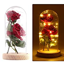 """""""Beauty and the Beast"""" Red Silk Rose in Glass Dome, ALLOMN 13"""" Preserved Flowers LED Light with Fallen Petals on a Wooden Base, Gift for Valentine's Day Anniversary Wedding Birthday (Red)"""