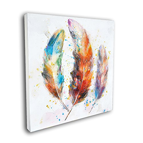 Crescent Art Framed Abstract Watercolor Bird Feather Painting on Canvas Print Picture Wall Art for Living Room Wall Decoration Home Accent (24 x 24 inch, B Framed) ()